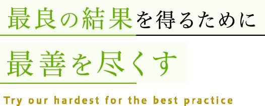 最良の結果を得るために最善を尽くす